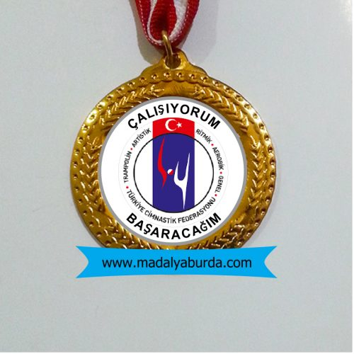 okul madalya örneği